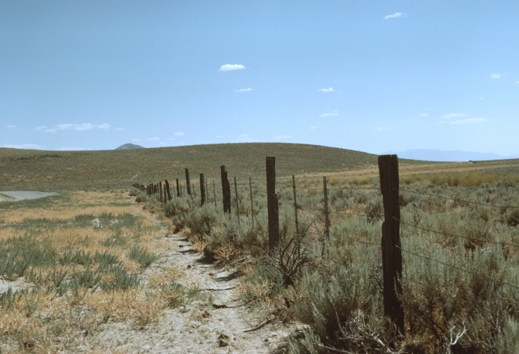 Fence with smooth wire (1978) - Suzi Jones - Paradise Valley Folklife Project Collection (AFC 1991:021) - Library of Congress